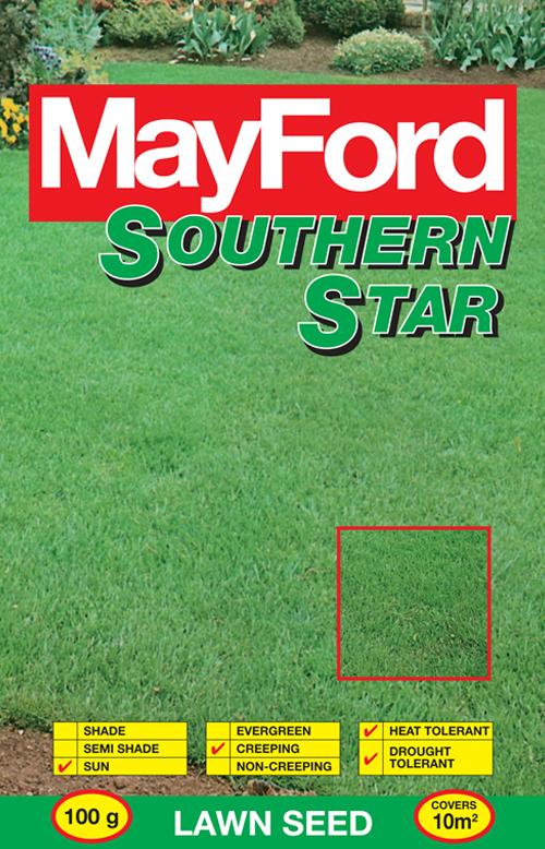 Cynodon Dactylon Southern Star