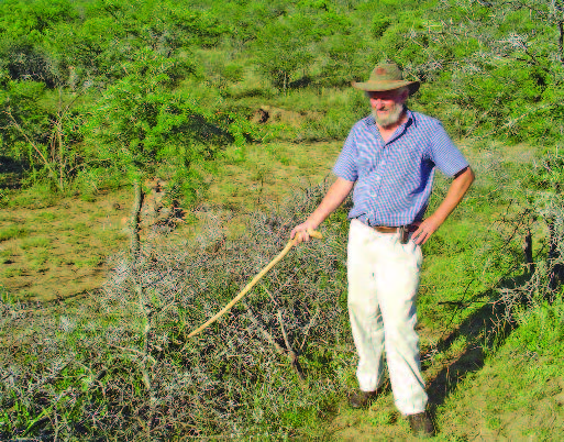 Improve veld with Biomosome™ seed mixtures PART 2